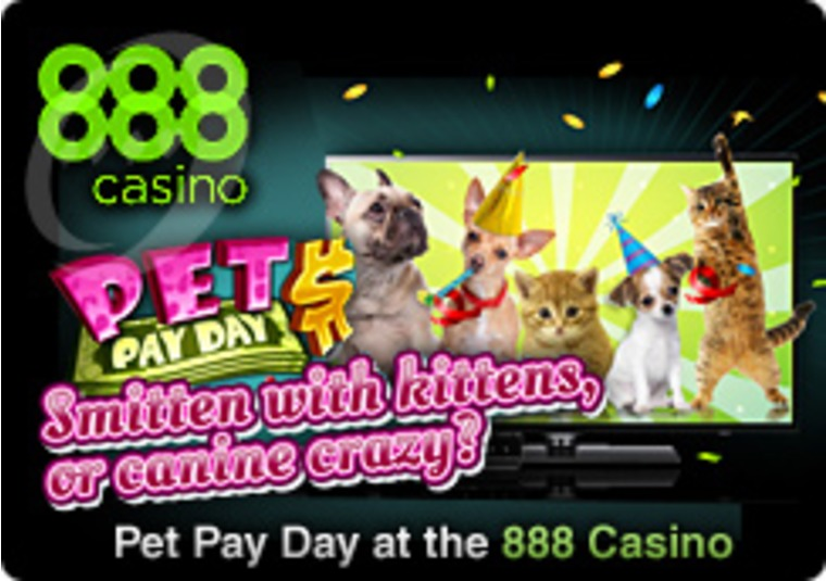 Pet Pay Day at the 888 Casino