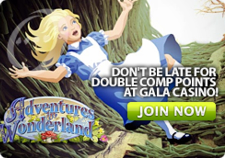 Don't Be Late For Double Comp Points at Gala Casino